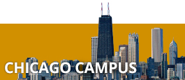 BI - Programs - UG Chicago Campus